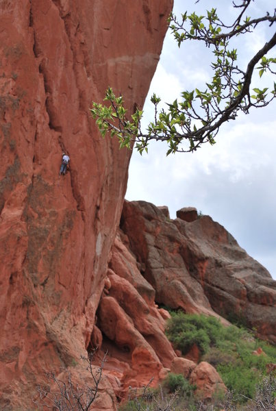 Beginning the first pitch of Triple Exposure in Garden of the Gods.  This photo was taken by my sister.