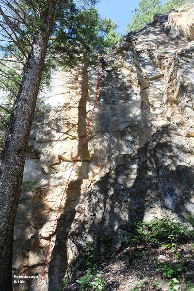 Rock Climbing Photo: Pseudosuga 5.10c, Topo