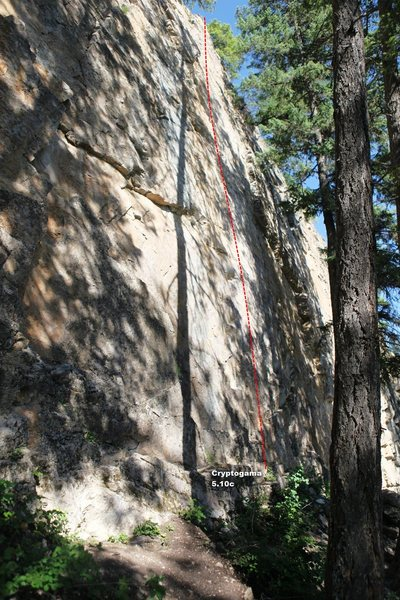 Rock Climbing Photo: Cryptogama 5.10c, Topo