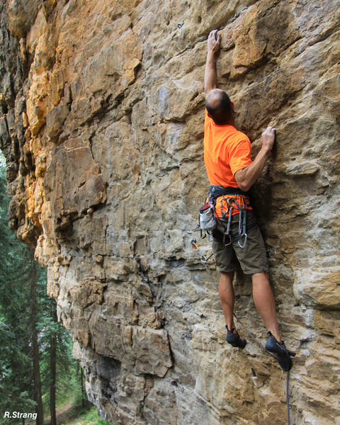 Alex starts the route with his &quot;signature&quot; long reach. Luckily the hand & foot holds are good and plentiful.<br> Cattle Drive (5.10+).