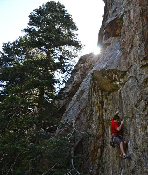Rock Climbing Photo: Spencer Bishop going for the red point