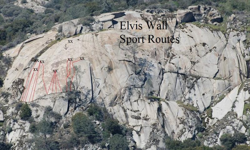 Elvis Wall Sport Climbs