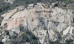 Rock Climbing Photo: Elvis Wall Sport Climbs