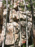 Rock Climbing Photo: Jones'n for Hibernation
