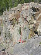 Rock Climbing Photo: The Decision Tree