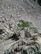 Rock Climbing Photo: Gene following.