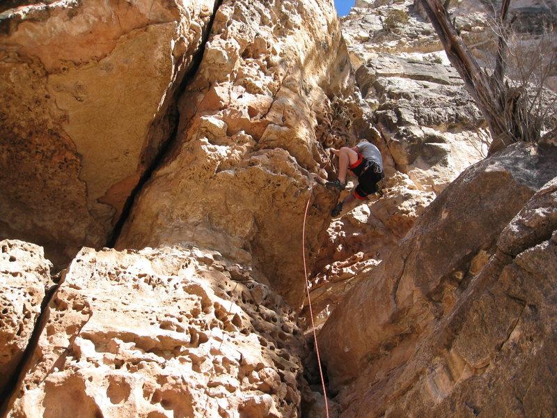 Rock Climbing Photo: jugs out roof
