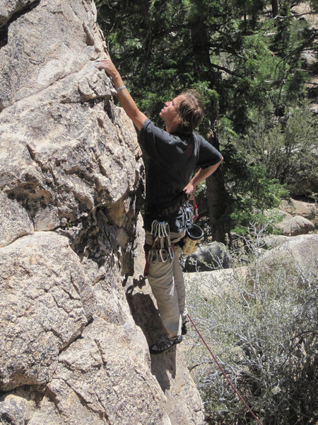 Christian climbing Wildrose.