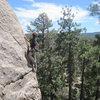 Christian climbing Wildrose.