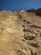 Rock Climbing Photo: Cleaning up on 5 Gallon Buckets, Zebra area of the...