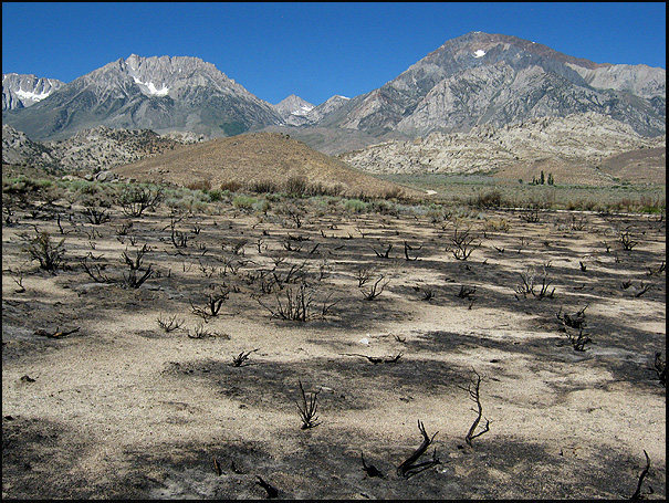 2011 fire. About a mile and a half from the boulders.<br> Photo by Blitzo.