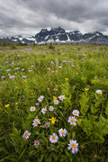 Rock Climbing Photo: The Remparts , Tanquin Valley.  Wild flowers and t...