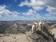 Rock Climbing Photo: Parson Russell's on summit Mt Massive