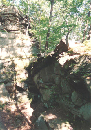 This is the Dreadlock Holiday area of The Pit. This photo appeared in the 2001 edition of the Logtown Climbing Guide. I did not take it.