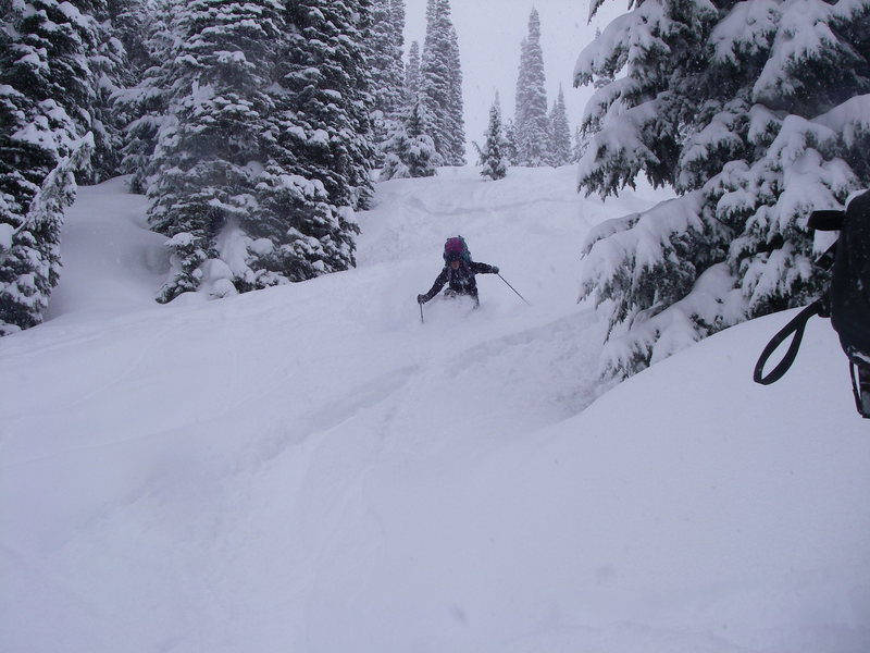 Selkirk Powder - March 2010