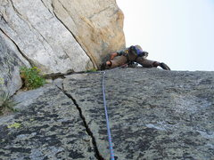 Rock Climbing Photo: flowers, splitter granite, blue skies....welcome t...