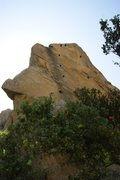 Rock Climbing Photo: 5.11d is the left-hand line of bolts up the black ...