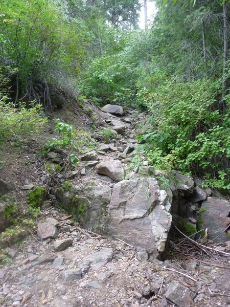 Tributary after bridge, path continues up this way and becomes more obvious.  Look for cairns.