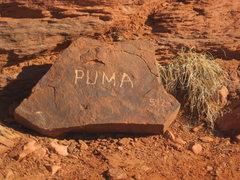 Rock Climbing Photo: Strange, my book says 11+