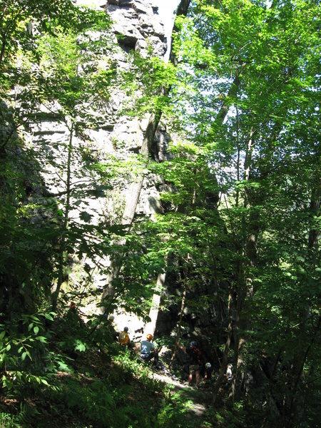 Rock Climbing Photo: Bottom half of Pussytoes.