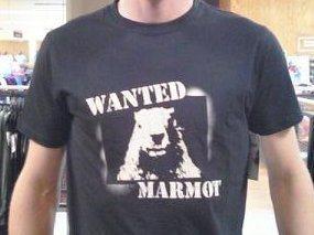 Awesome Marmot Shirt.
