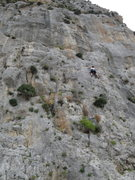 Rock Climbing Photo: Kristen top roping Swiss Baby