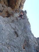 Rock Climbing Photo: Leading Reginald.