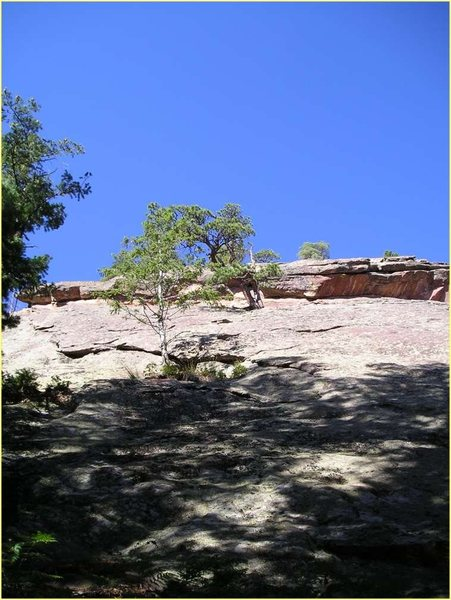 At the base of the East Face.  The crux roof is just above the higher tree.