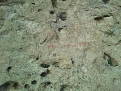 Rock Climbing Photo: You can faintly make out the label here