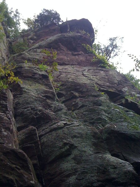 Orangutan Buttress. A new line of bolts<br> went up in summer 2011. <br> <br> The Long Chimney goes up the corner on the far left side of the picture.