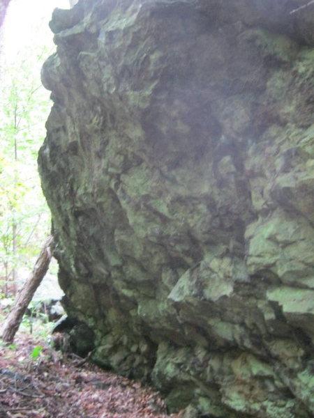 Stinging Nettle Boulder