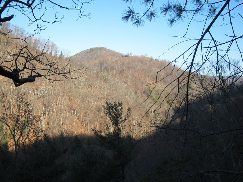 view from atop main cliff line looking up the N. Fork Moormans' watershed.