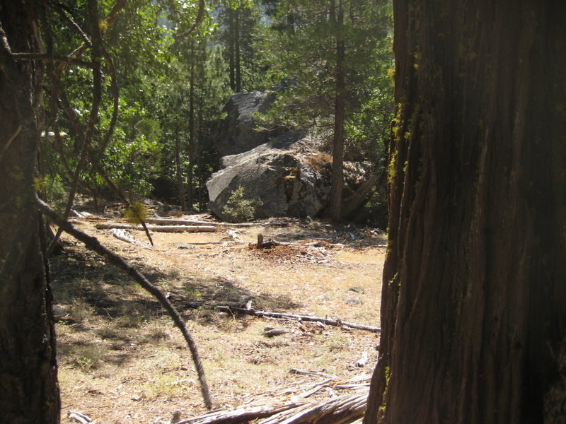 Rock Climbing Photo: The Cedar boulder from the Trail (roughly).