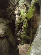 Rock Climbing Photo: Bear Canyon Arizona Look Close
