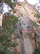 Rock Climbing Photo: Damsel in Distress.