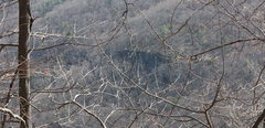 Rock Climbing Photo: cliff band as seen from across gorge