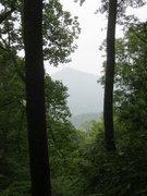 Rock Climbing Photo: Fox Mtn thru the trees from atop main boulder wall...