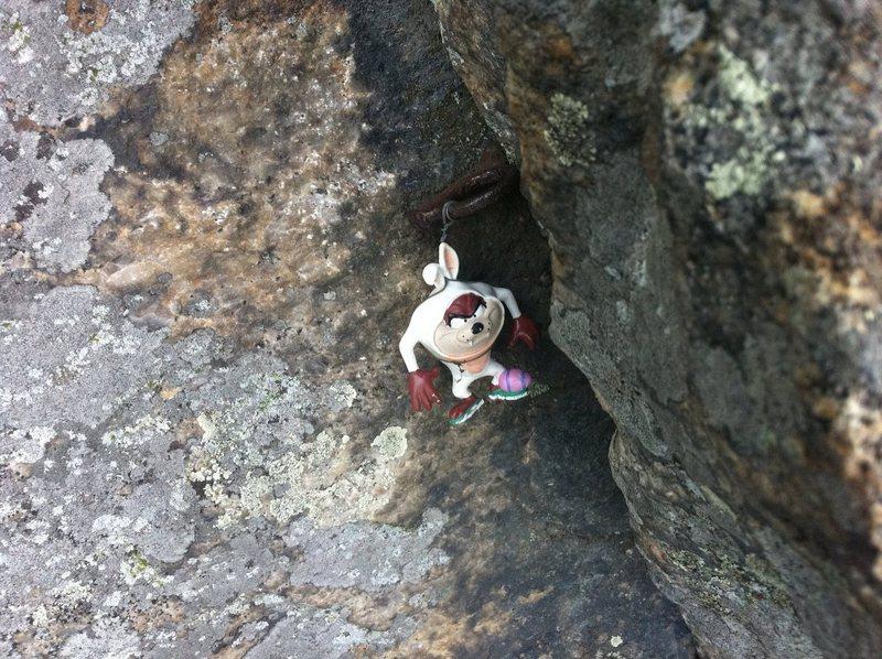 Rock Climbing Photo: Taz