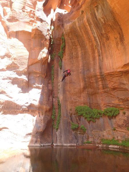 Rock Climbing Photo: choprock