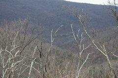 Rock Climbing Photo: cliffs as seen from Skyline Drive.