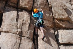Rock Climbing Photo: Joshua tree climbing