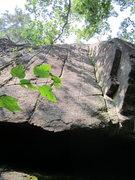 Rock Climbing Photo: Scrub me!