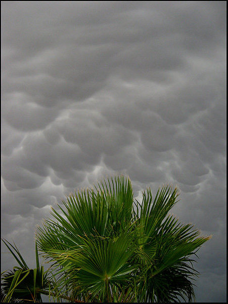 Awesome sky! Twenty Nine Palms.<br> Photo by Blitzo.