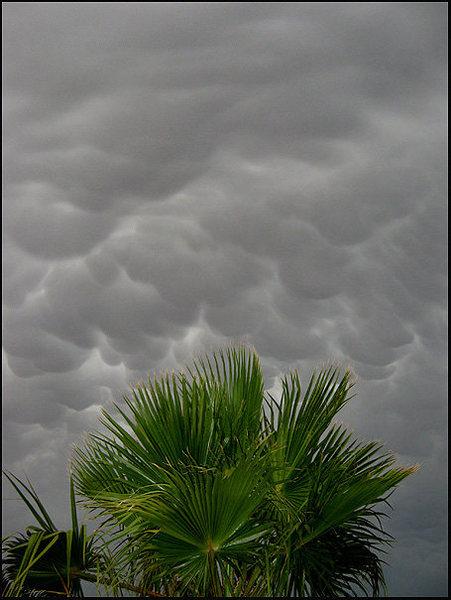Rock Climbing Photo: Awesome sky! Twenty Nine Palms. Photo by Blitzo.