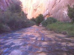 Rock Climbing Photo: Death hollow