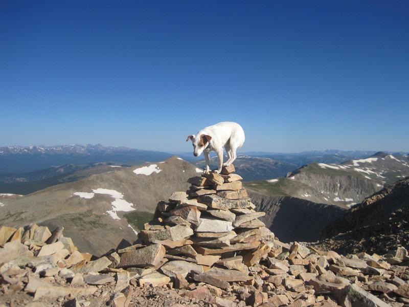 Summit 14'er