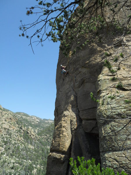 Rock Climbing Photo: Marcy on Coke
