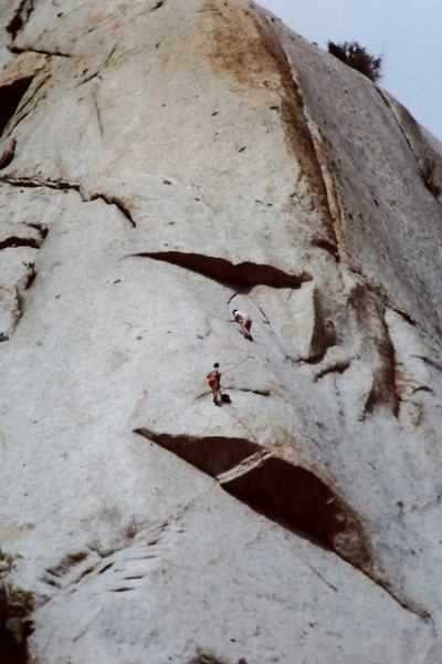 Miller leads on the second pitch of Dark Horse.  2nd or 3rd ascent.   '80/81<br> <br> Pic taken from the road - grossly foreshortened.