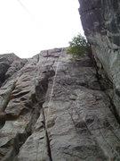 Rock Climbing Photo: Tick Fever.