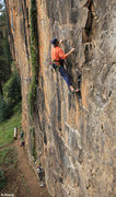 Rock Climbing Photo: Some thin moves before the ledge. Nescafe (5.9).